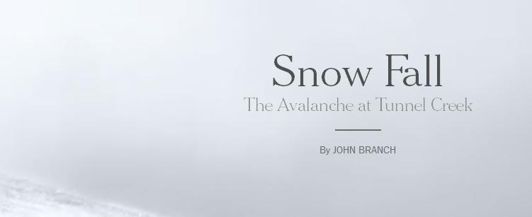 Обложка «Снегопада»