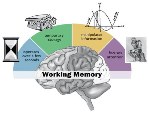 case workbrain