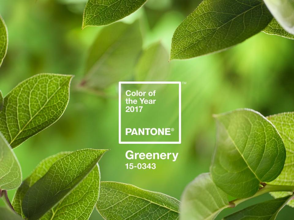 pantone-grren