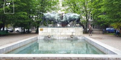 бассейн с двумя быками