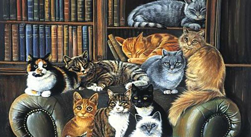 Много котов в кожаном кресле