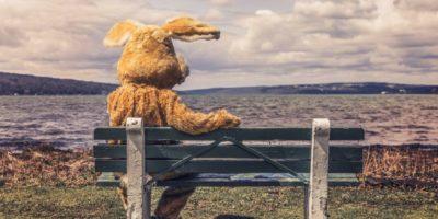 Плюшевый заяц на скамейке, на берегу