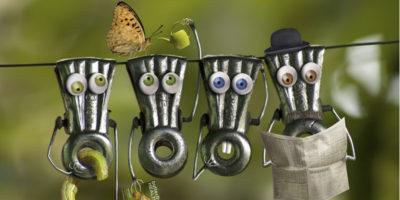 Прищепки с глазами, бабочка