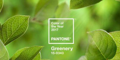 зеленые листья, квадрат, надпись