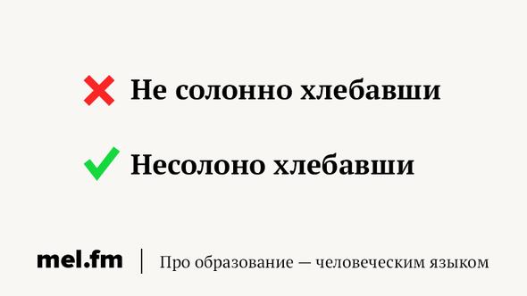 phrase-6
