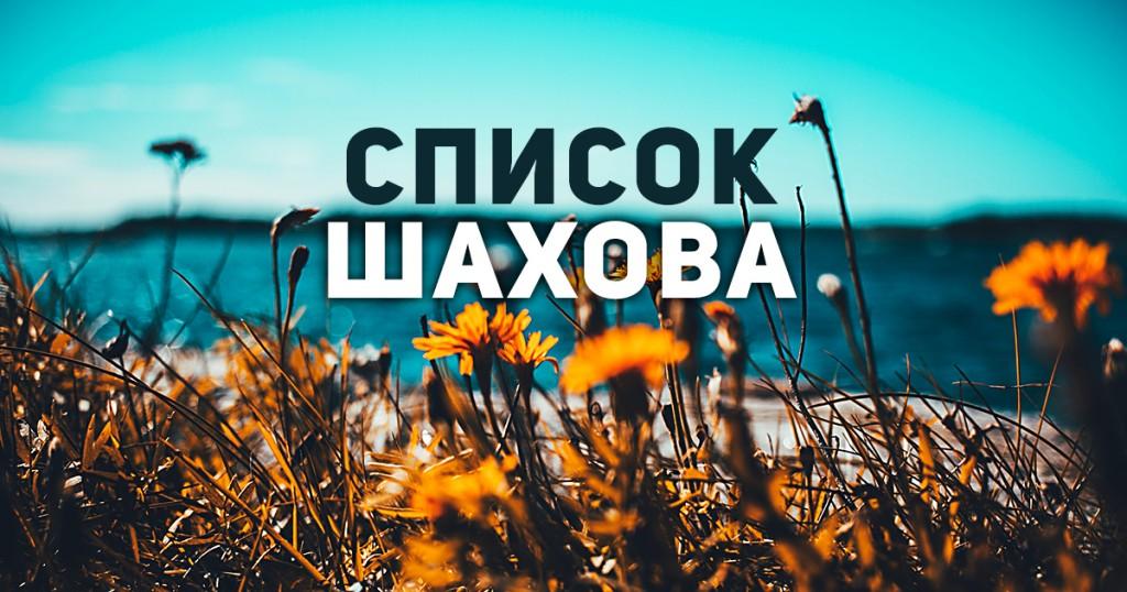 Желтые цветы на фоне неба
