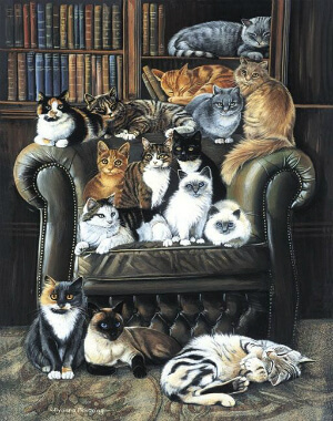 cats-in-library small