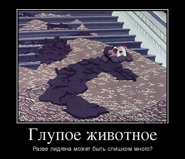 99887_glupoe-zhivotnoe_demotivators_to
