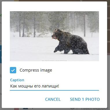 Галочка «Compress image» отправляет картинку картинкой, а не файлом