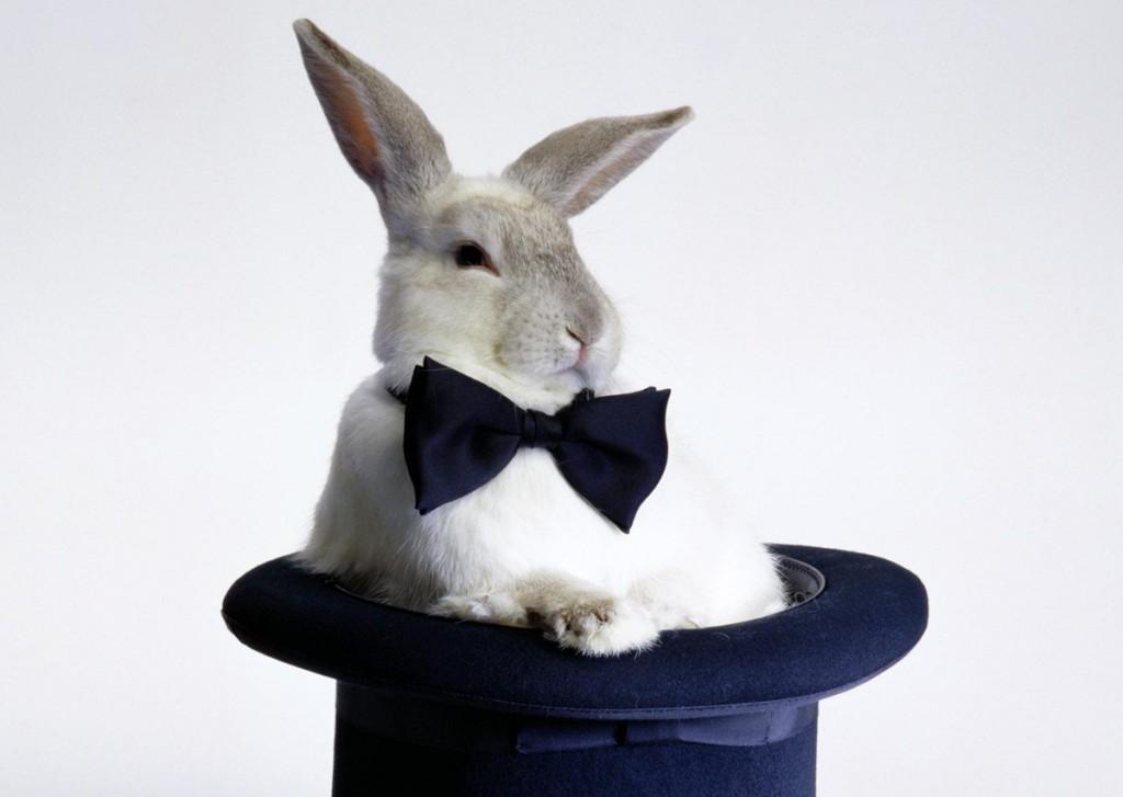 Кролик в цилиндре