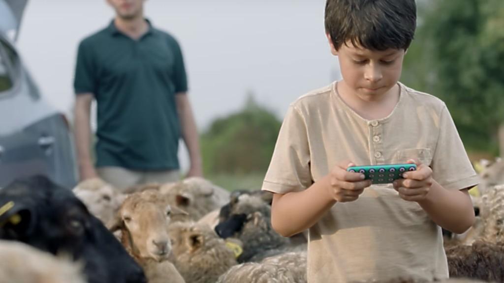 Мальчик с планшетом и бараны