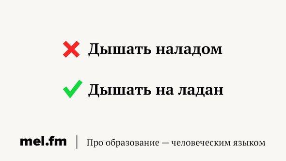 phrase-5